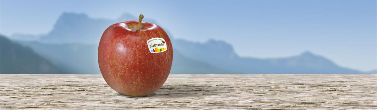 Südtiroler Apfel Breaburn